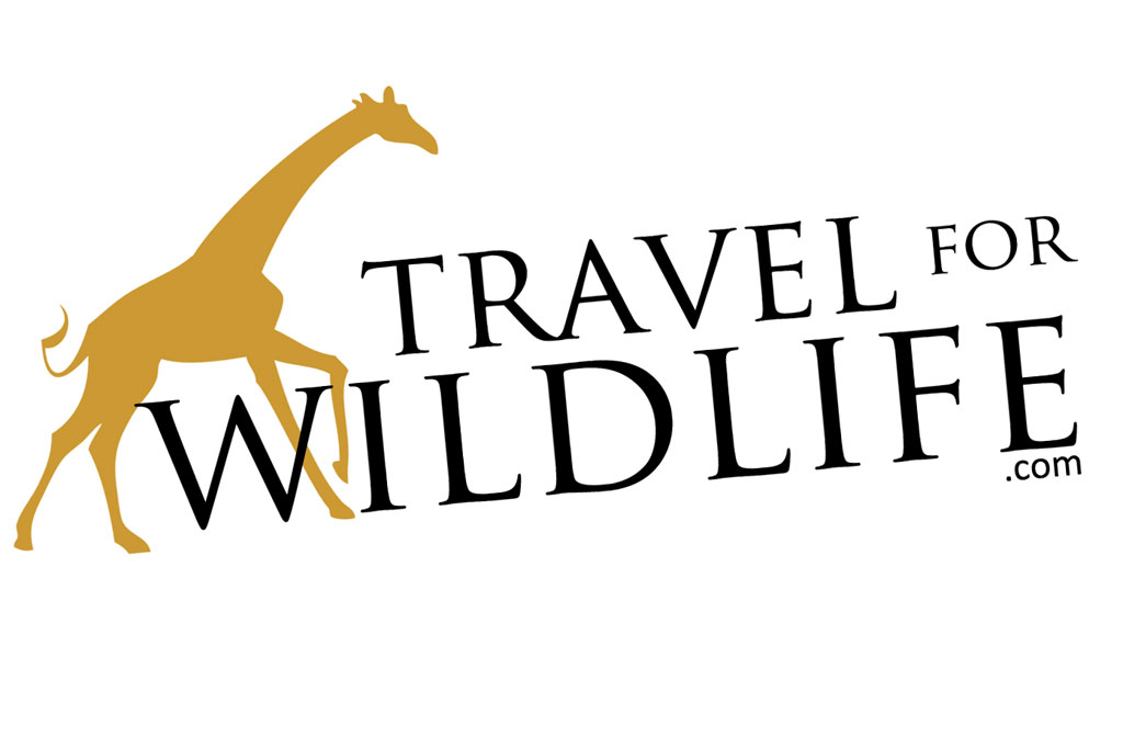travelforwildlife