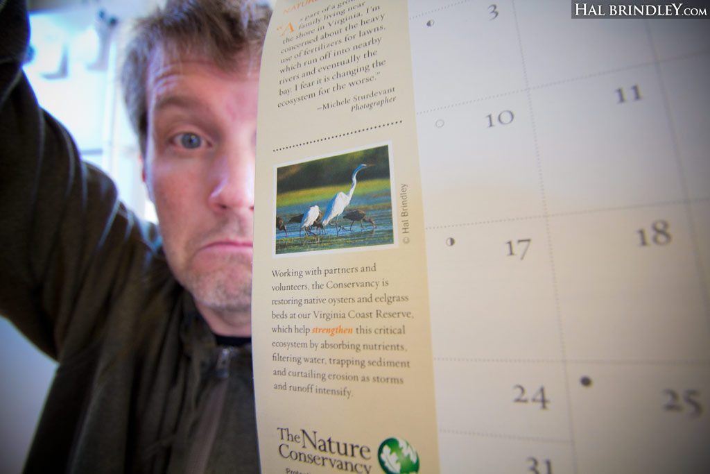 Hal Brindley with his photo in the Nature Conservancy Calendar 2014