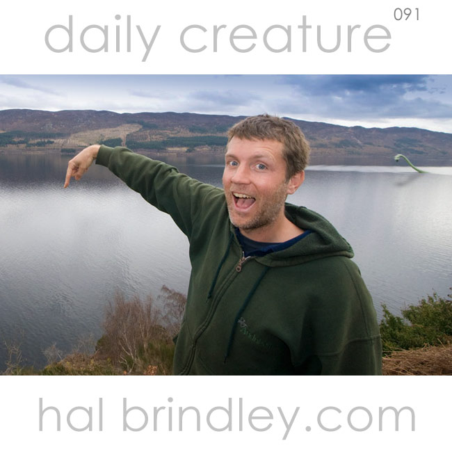 Loch Ness Monster (Plesiosaurus bullcrapius), appears mysteriously behind wildlife photographer Hal Brindley. Loch Ness, Scotland